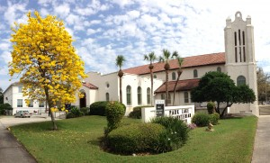 church with tabebuia feb 2014