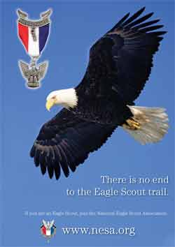 Boy scout eagle poster